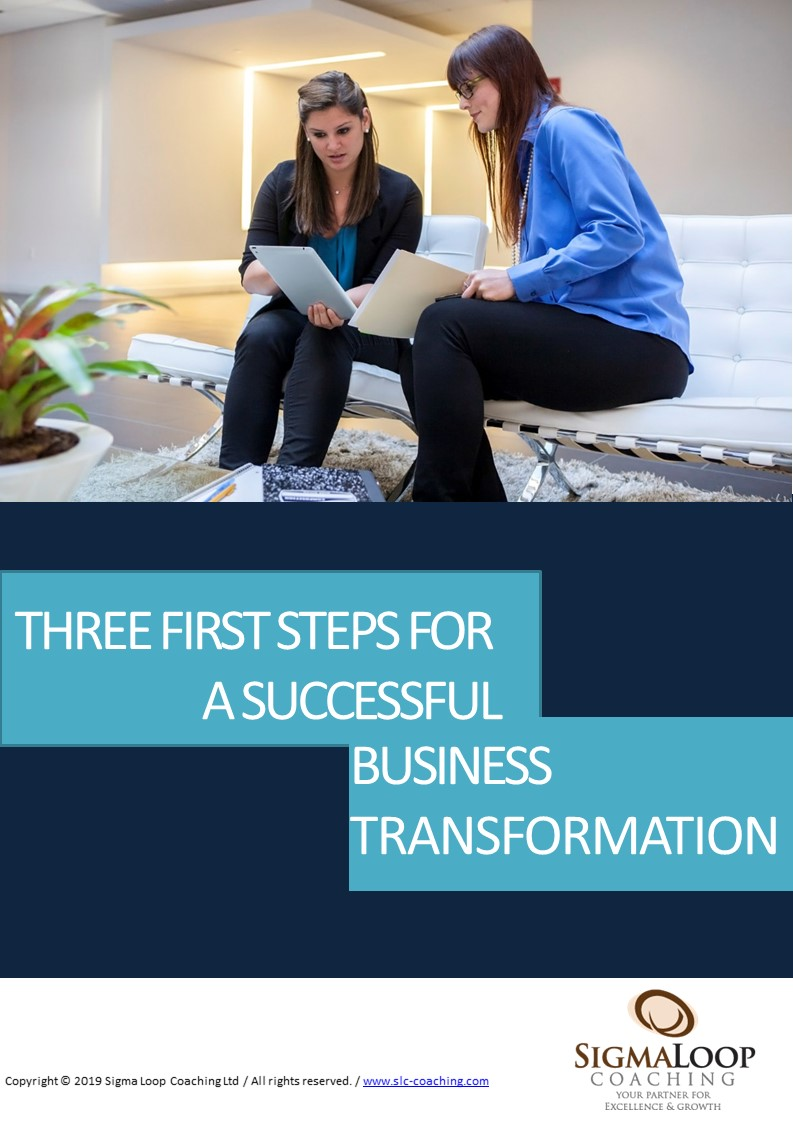 FREE E-BOOK, THREE FIRST STEPS FOR A SUCCESSFUL BUSINESS TRANSFORMATION