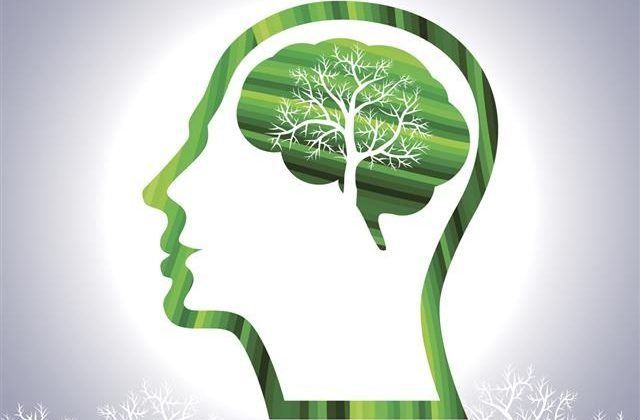 THE-PRACTICAL-IMPORTANCE-OF-ENVIRONMENTAL-PSYCHOLOGY